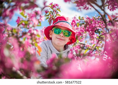 A portrait of a smiling toddler boy in a colorful sunglasses on a blooming tree. Springtime.