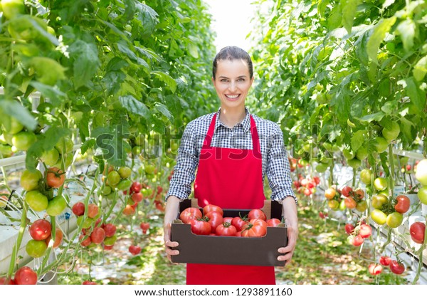 Portrait of smiling woman carrying tomatoes in crate amidst plants at greenhouse