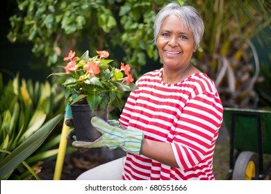 Portrait of smiling woman holding potted plant while kneeling in yard