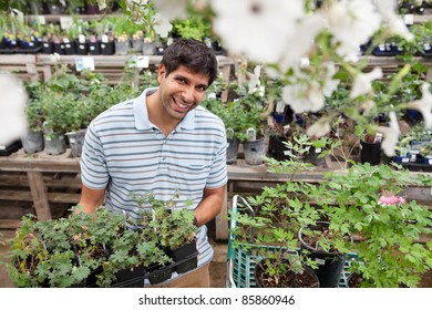 Portrait of smiling young man holding rack of potted plants
