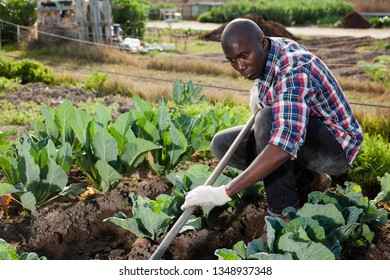 Portrait of smiling young man working in garden at spring farm