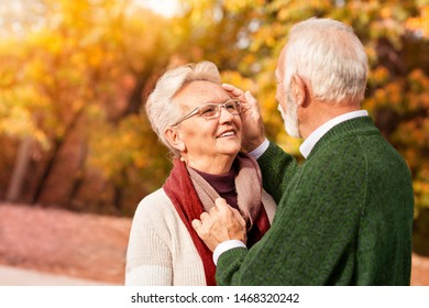 Portrait of sweet 60-year-old couple who are looking gently each other in autumn park