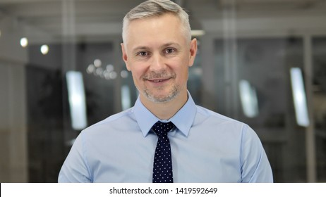Portrait of Talking Grey Hair Businessman, Online Video Chat