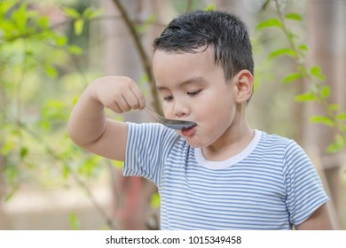 Portrait Thai boy tasting food and use stainless spoon on table in the morning at garden home. Breakfast is beneficial to the body and brain. He has white skin and cute face. Soft focus and blur.
