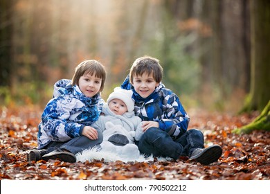 Portrait of three boys, brothers, in the forest, autumn winter time