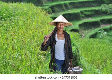 Portrait of traditional organic rice farmer with his tools. Shoot on Bali island, indonesia.