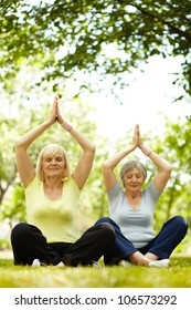 Portrait of two aged females practicing yoga in park