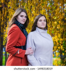 Portrait two beautiful happy girlfriends on a sunny autumn day for a walk in the park.