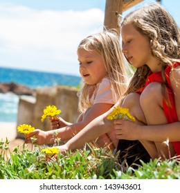 Portrait of two girlfriends picking flowers at seaside.