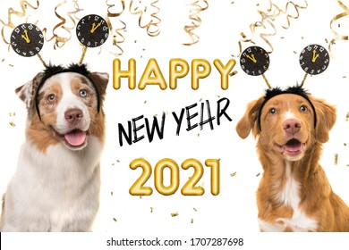 Portrait of two happy dogs wearing a new year diadem on a white background with golden party garlands and text happy new year 2021