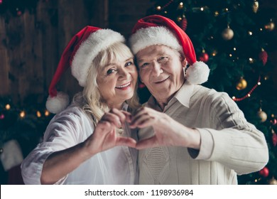Portrait of two nice cheerful sweet lovely tender beautiful charming grey-haired people married spouses husband wife near decorated fir tree showing heart shape with hands winter december
