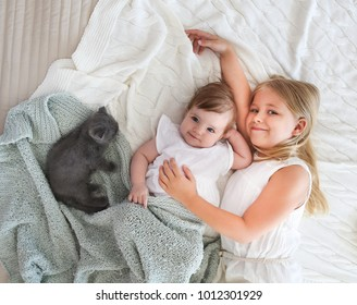 Portrait of two small pretty girls with kitten top view