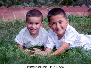 portrait of two smiling brothers in the grass