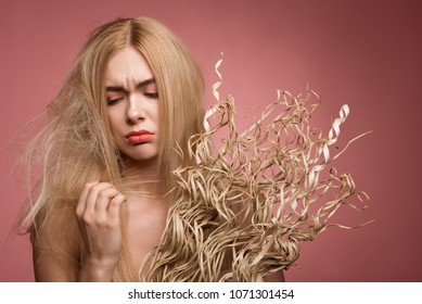 Portrait of unhappy girl looking at her split and disheveled hair. Bunch of dehydrated grass is in hand. Isolated on rose background
