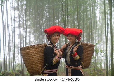 Portrait of Vietnamese ethnic minority Red Dao women in traditional dress and basket on back in misty bamboo forest in Lao Cai, Vietnam