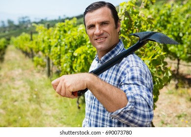 Portrait of vintner standing with shovel in vineyard on a sunny day