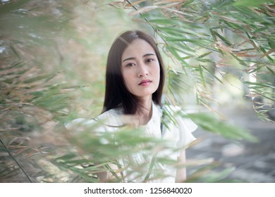 Portrait woman in bamboo forest