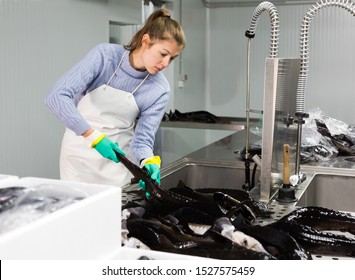 Portrait of woman fish farm worker examining and washing sturgeon before packaging