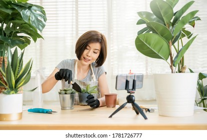 Portrait of young asian woman planting plant pot to fan channel, record home video. Online influencer girl in social media marketing live her hobby, lockdown coronavirus new normal sme small business