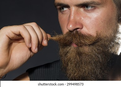 Portrait of young attractive unshaven guy with beard touching moustache with hand looking away on black studio background, horizontal picture
