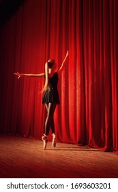 Portrait of a young ballerina on stage