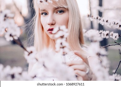 Portrait of young blonde woman among blooming branches of apricot tree.
