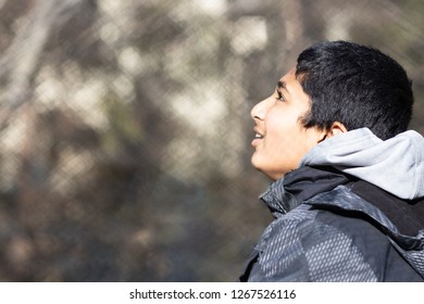 Portrait of a Young Boy Gazing Up at the Sky