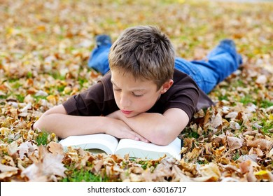 Portrait of young boy reading book outdoor