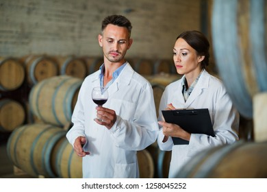 Portrait of young diligent positive  man and woman wearing coats holding glass of wine in winery cellar