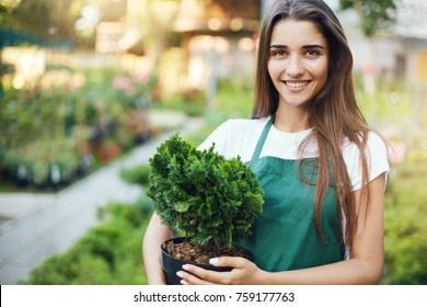 Portrait of young european female garden owner holding a plant running a successful online gardening shop