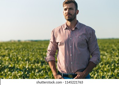 Portrait of young farmer in soybean filed.