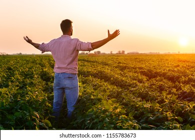Portrait of young farmer standing in soybean field with his arms outstretched at sunset.