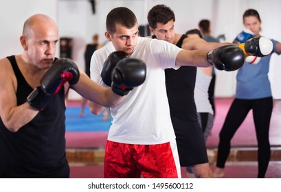 Portrait of young  females and males training in boxing gloves