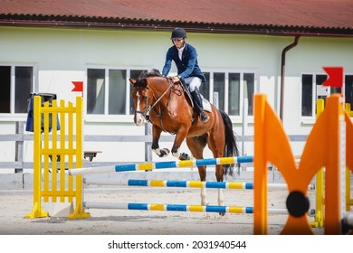 portrait of young gelding horse and adult man rider knocked jump pole during equestrian show jumping competition in daytime in spring