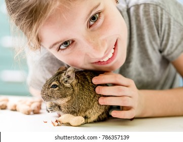 Portrait of young girl with degu squirrel and nuts, close-up.