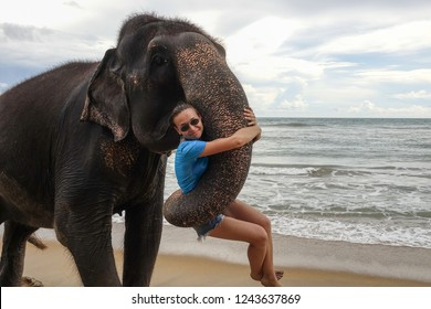 Portrait of a young girl with an elephant on the background of a tropical ocean beach. Elephant hugs a young girl with his trunk. Tropical coast of Sri Lanka.
