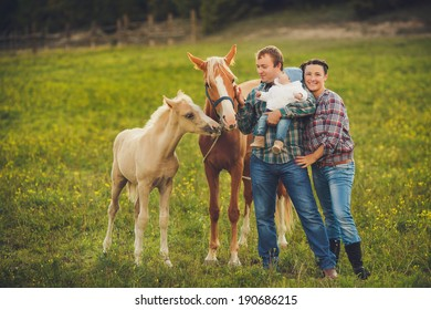 Portrait of a Young happy family having fun at countryside outdoors. Summertime. Family feeding Horses on the meadow