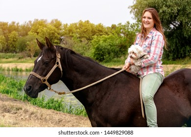 portrait of young laughing woman with her horse and her little dog