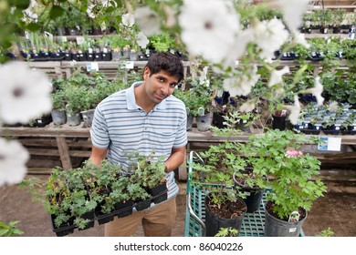 Portrait of young man buying potted plants from garden centre