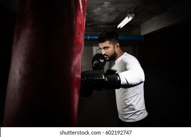 Portrait of young man practicing kickboxing at the gym