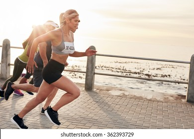 Portrait of young people running on seaside promenade. Group of women running marathon.