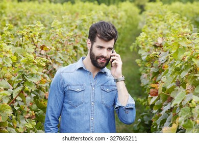 Portrait of young professional man standing between vines and making call while working.