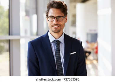 Portrait of young professional man in suit