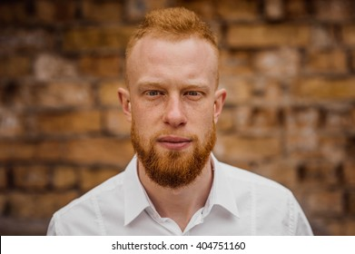 portrait of young red hair man with beard horizontal