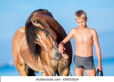 Portrait of young rider with horse in sunset. Dialog between big horse and boy on blue background outdoors. Funny smiling horse.