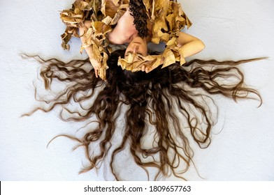 Portrait of a young sexy woman with very long brown hair like a fan artfully lying between leaves of a dry decorative banana tree, on the gray studio floor, copy space.