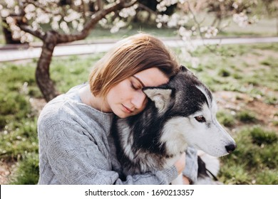 Сlose-up portrait of a young woman hugging her husky dog against the background of a spring park. Concept of walking dogs in the city park.