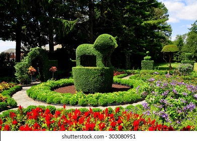 Portsmouth, Rhode Island - July 16, 2015:  A regal topiary lion surrounded by colorful annuals at Green Animals Topiary Gardens