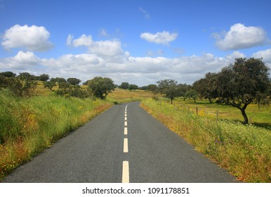 Portugal, Alentejo Region, Evora district. An empty country road going through a typical springtime Alentejo rural landscape.