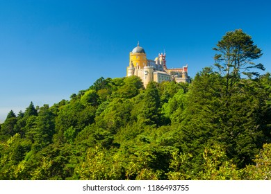Portugal - Sintra - Pena palace, UNESCO World heritage site) sitting atop of the forested hill. Wide space for text